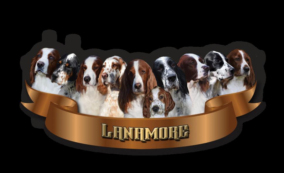 Lanamore